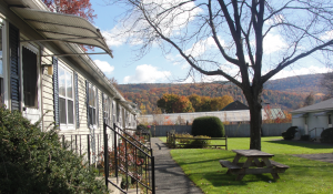About Beech Tree Apartments; Berkshire Apartments in Great Barrington, MA